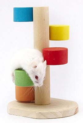 Pet-Hamster-Play-Toy-Wooden-Scaling-Ladder-Colorful-0